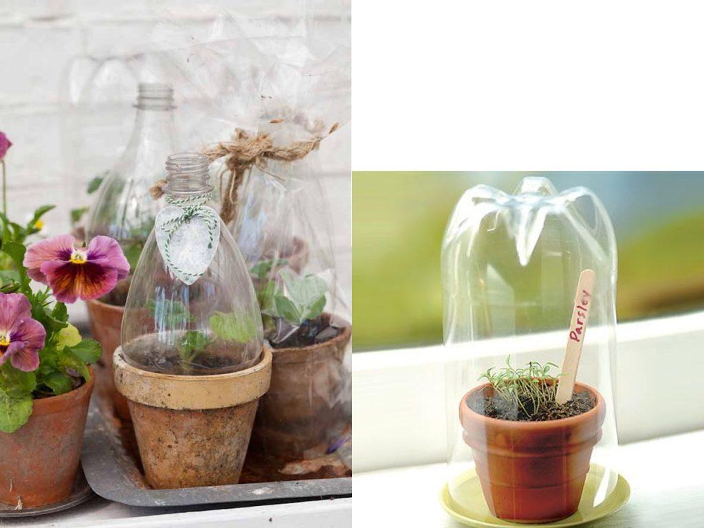 invernadero con botellas de plástico recicladas