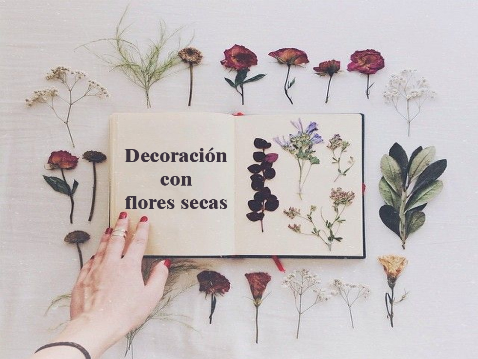 9 ideas de decoraci n con flores secas for Decoracion con plantas crasas