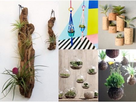 10 ideas de decoraci n con plantas colgantes for Vestir una pared con plantas