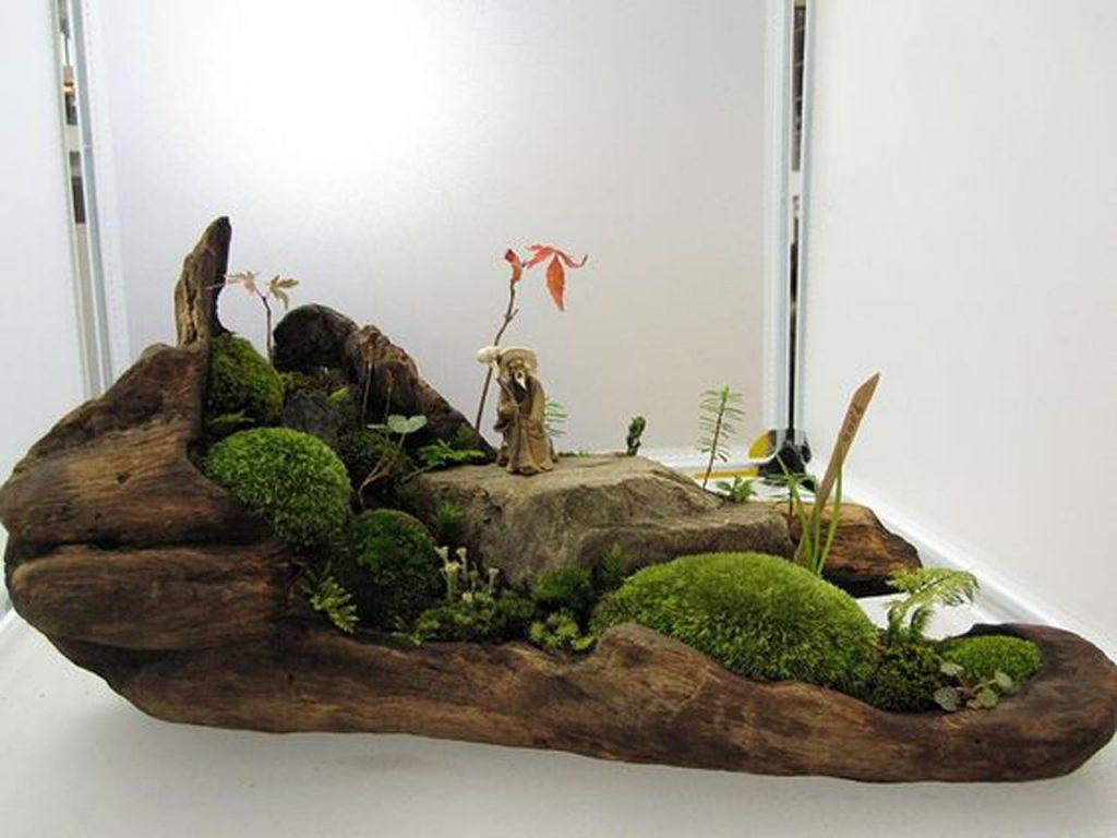 jardn en miniatura en un tronco