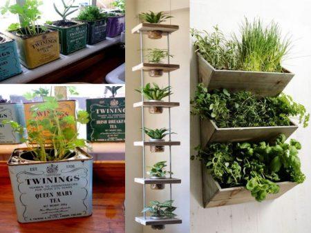 decoración con plantas huerto