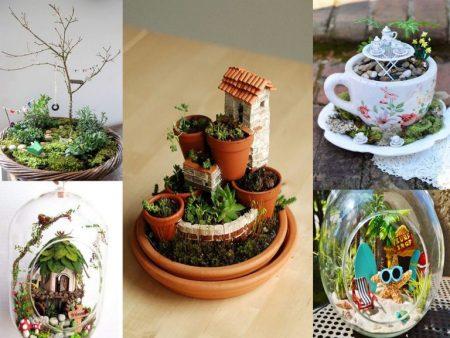 decoración plantas minijardines
