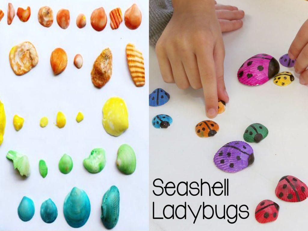 explosión de colorido en conchas de mar