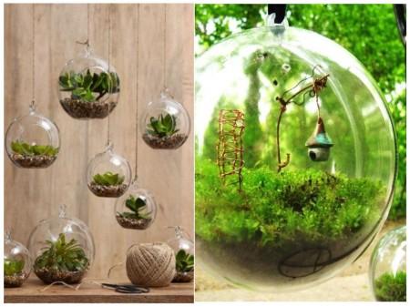 terrarios en bolas cristal