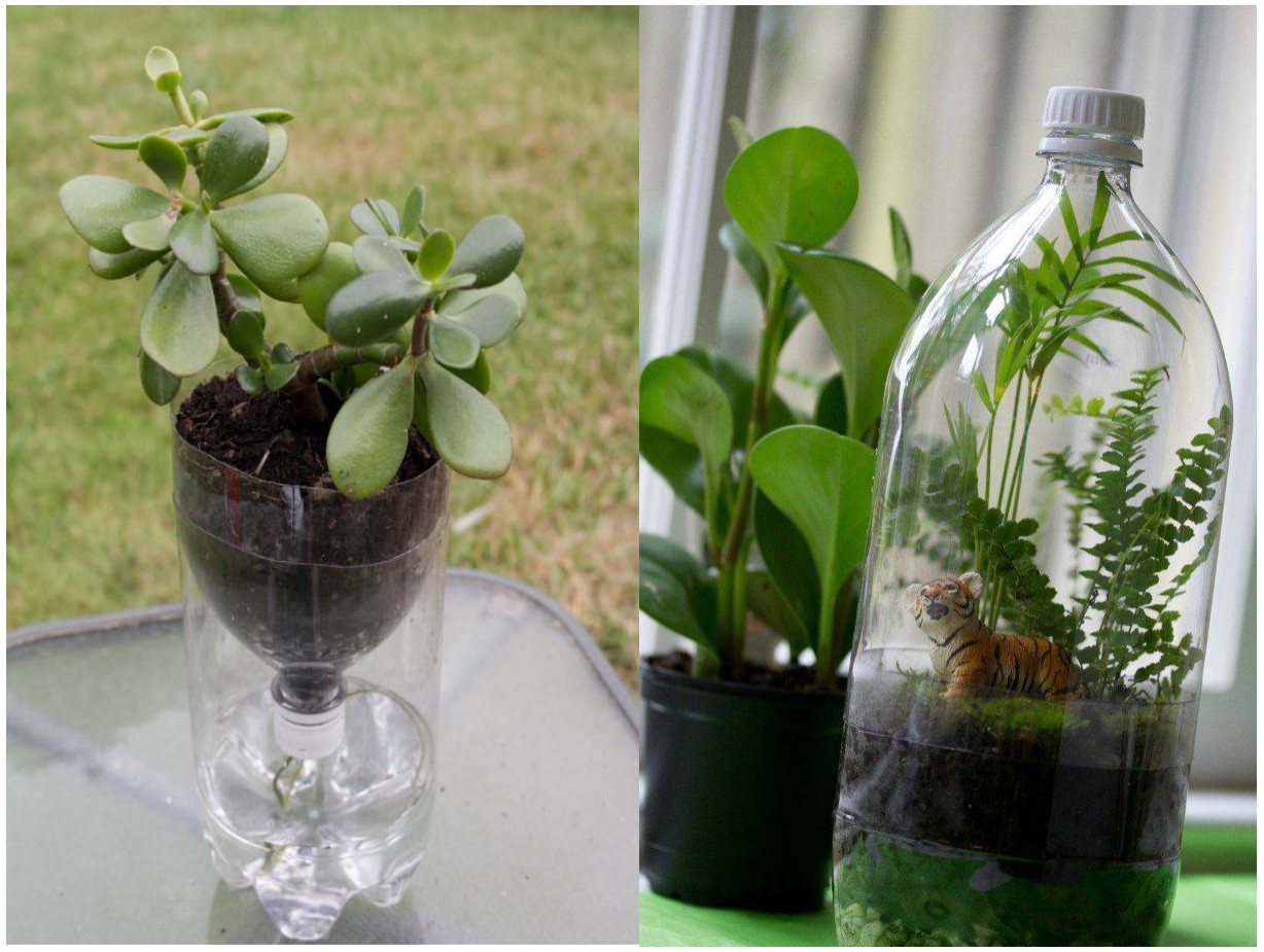 Tendencias decoraci n de terrarios y mundos imaginarios for Adornos con botellas para plantas
