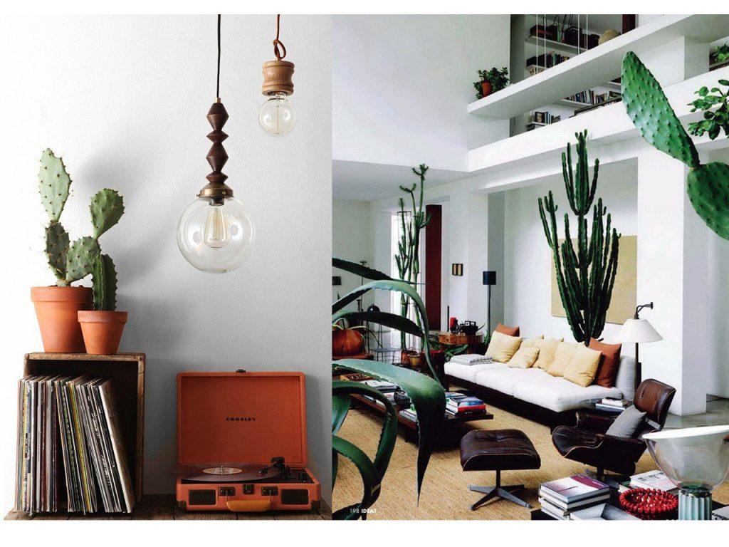 decorar con suculentas y cactus
