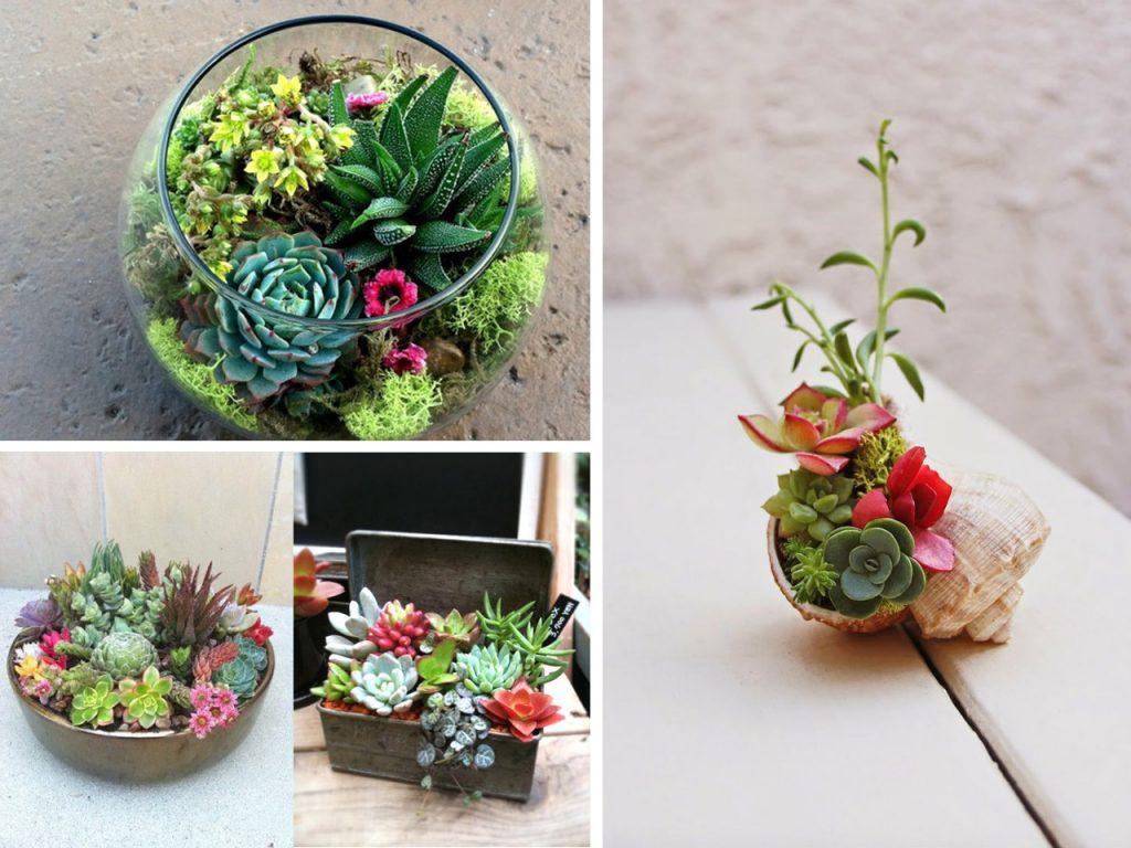 ideas para decorar con suculentas y cactus