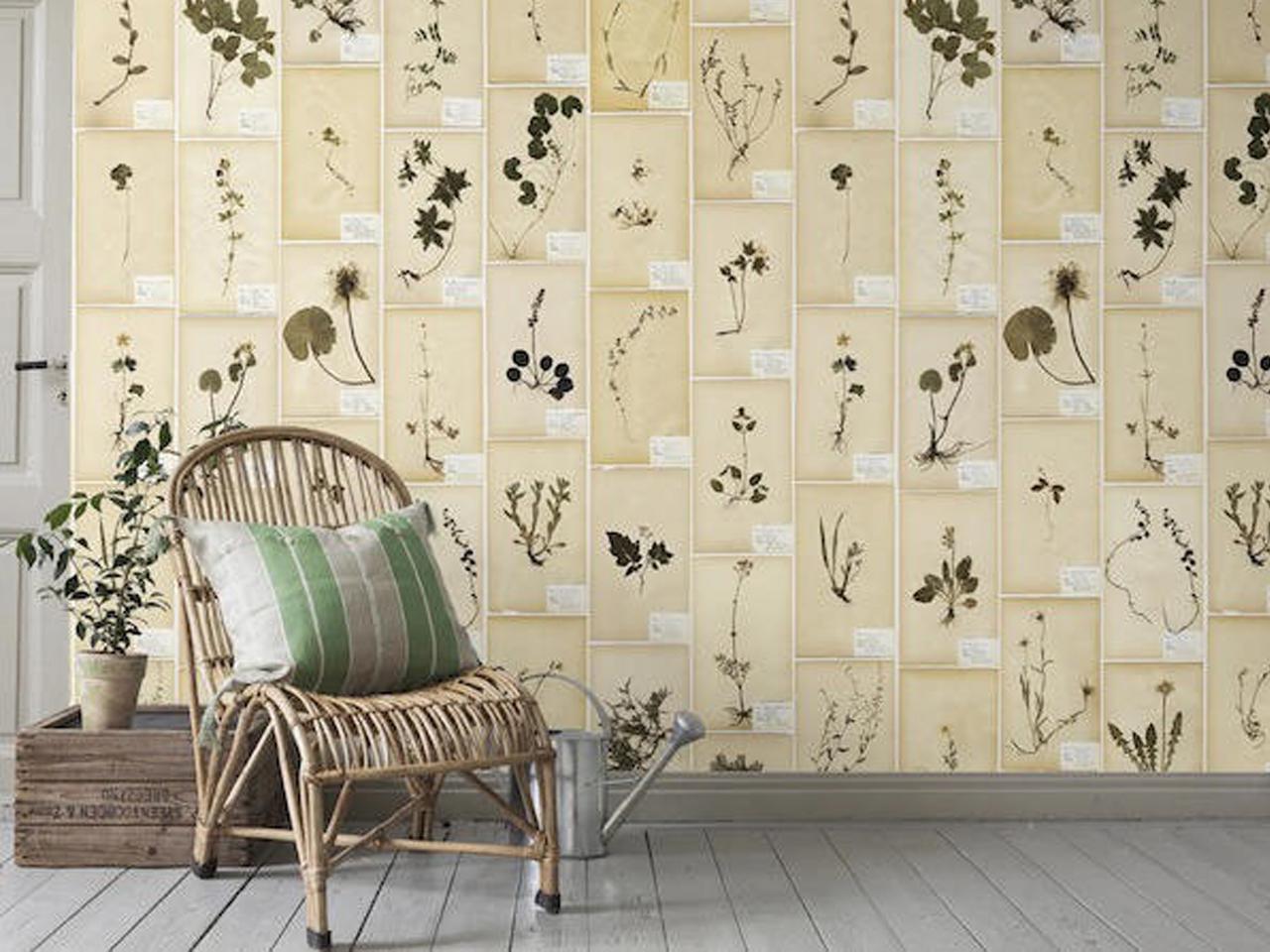 Decorar con hojas secas las 9 mejores ideas - Ideas para decorar paredes con plantas ...