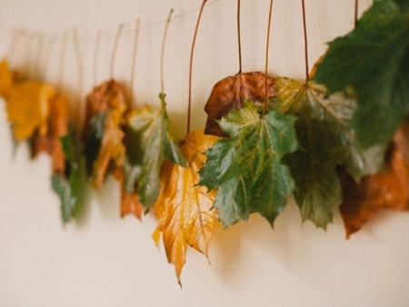 decorar con hojas secas