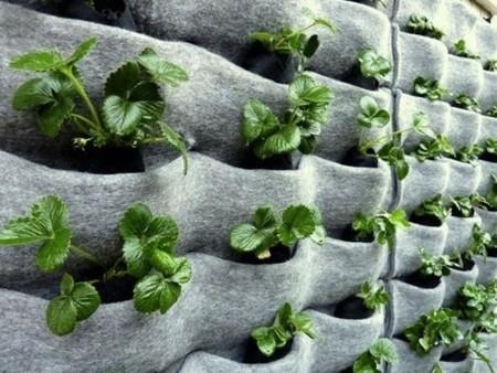 decoración de paredes con fieltro para plantas