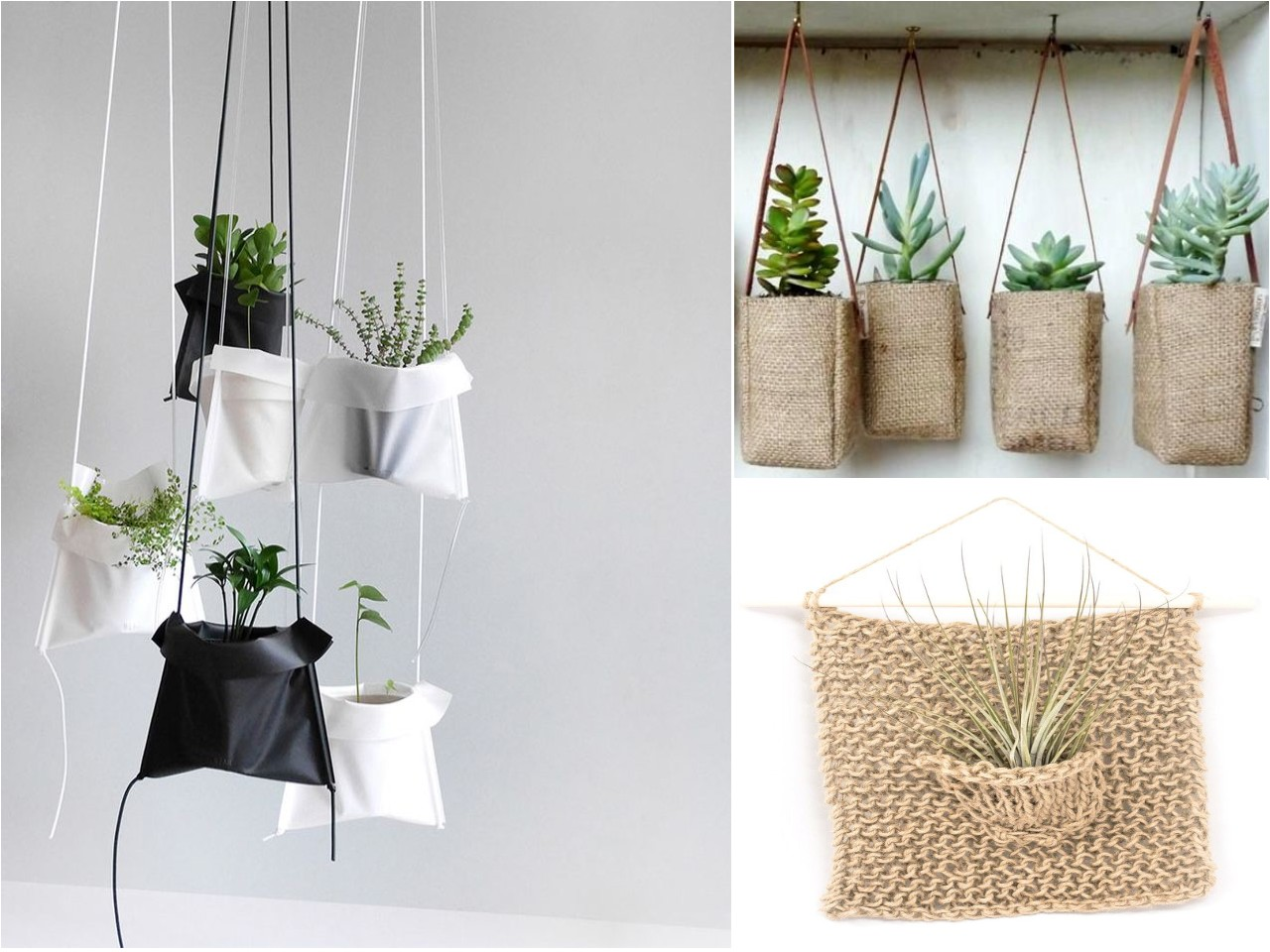 10 ideas de decoraci n con plantas colgantes for Piedras para decorar plantas