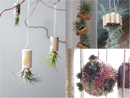 decoración con plantas colgantes con corcho
