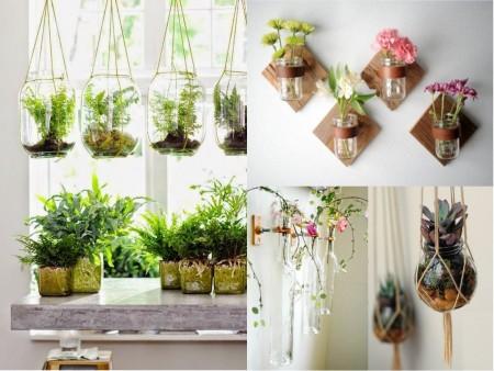 vidrio reciclado para hacer plantas colgantes