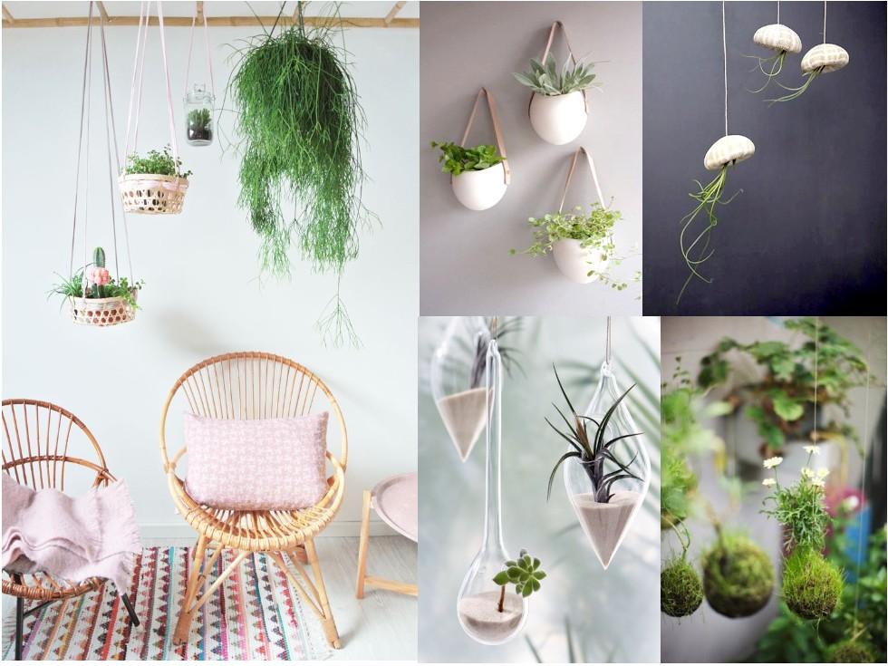 10 ideas de decoraci n con plantas colgantes for Decoracion de macetas para plantas