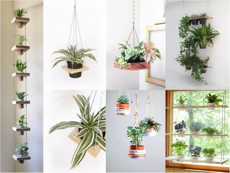 decorar con plantas en estantes colgantes