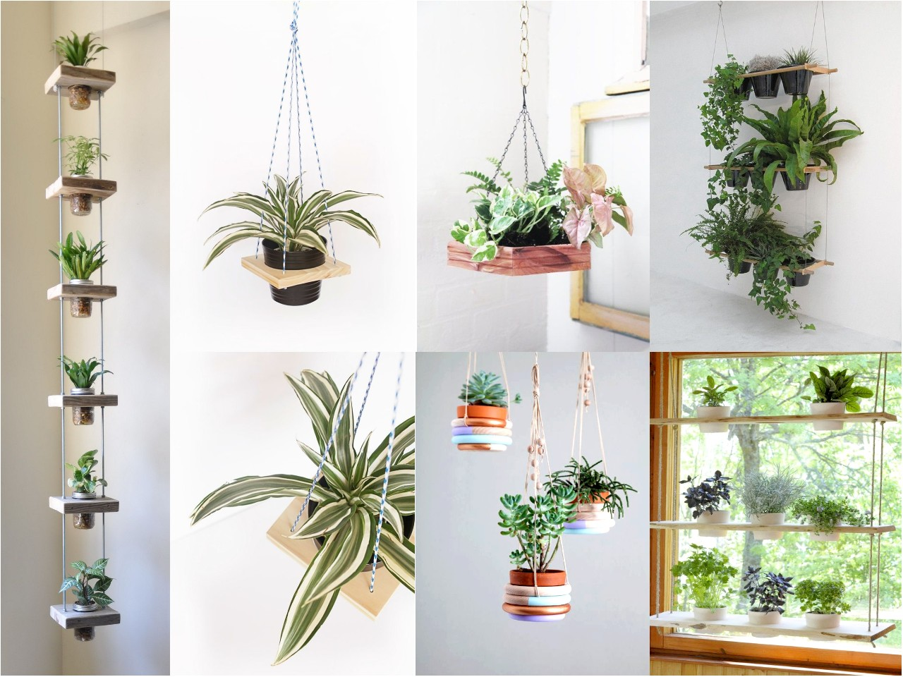 10 ideas de decoraci n con plantas colgantes for Muebles para plantas