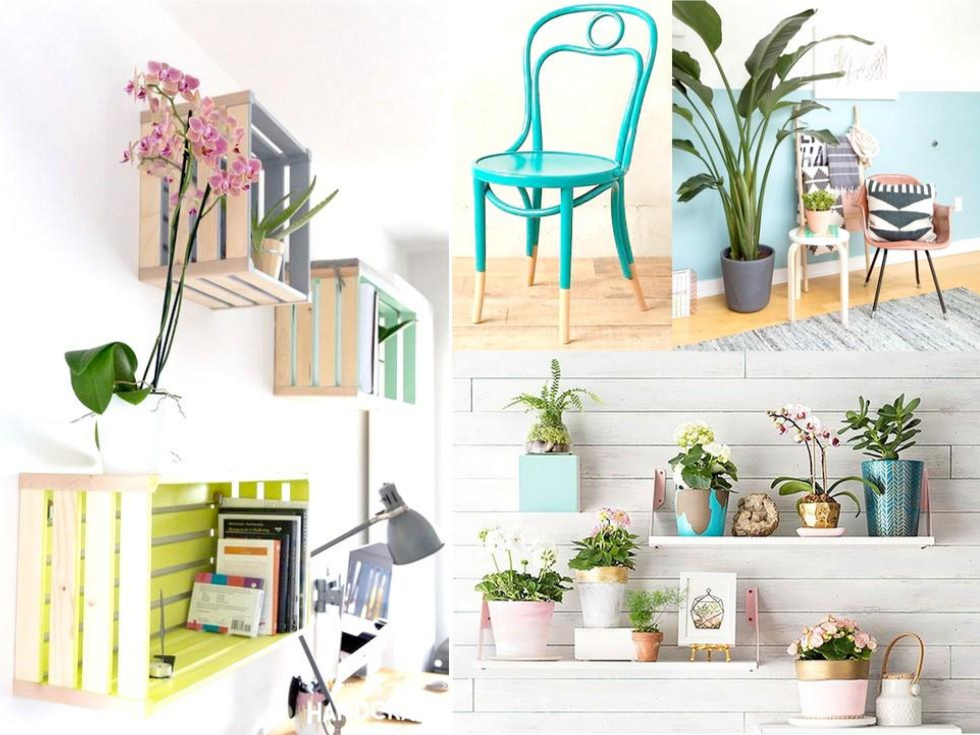 7 ideas para decorar con poco dinero el sal n de tu casa for Como decorar una pared rustica