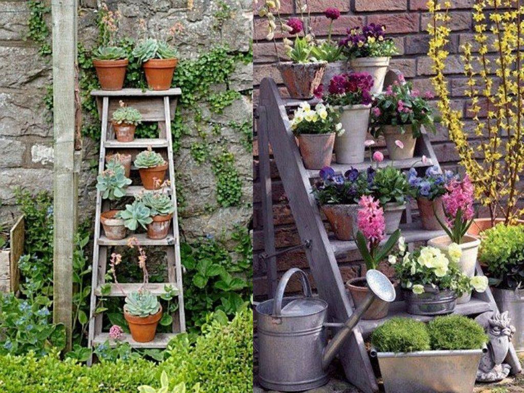 plantas y escaleras de madera
