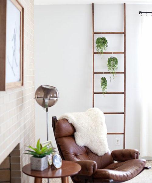 escaleras de madera con plantas