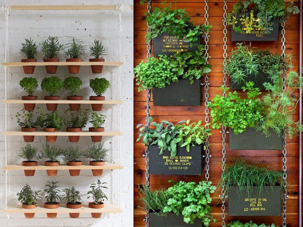 Ideas para cultivar un huerto en casa for Como hacer un jardin interior en casa