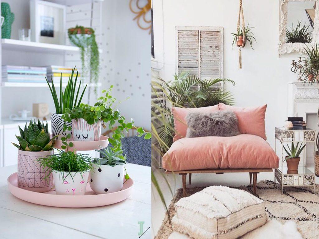 complementos decoración colores suave rosa