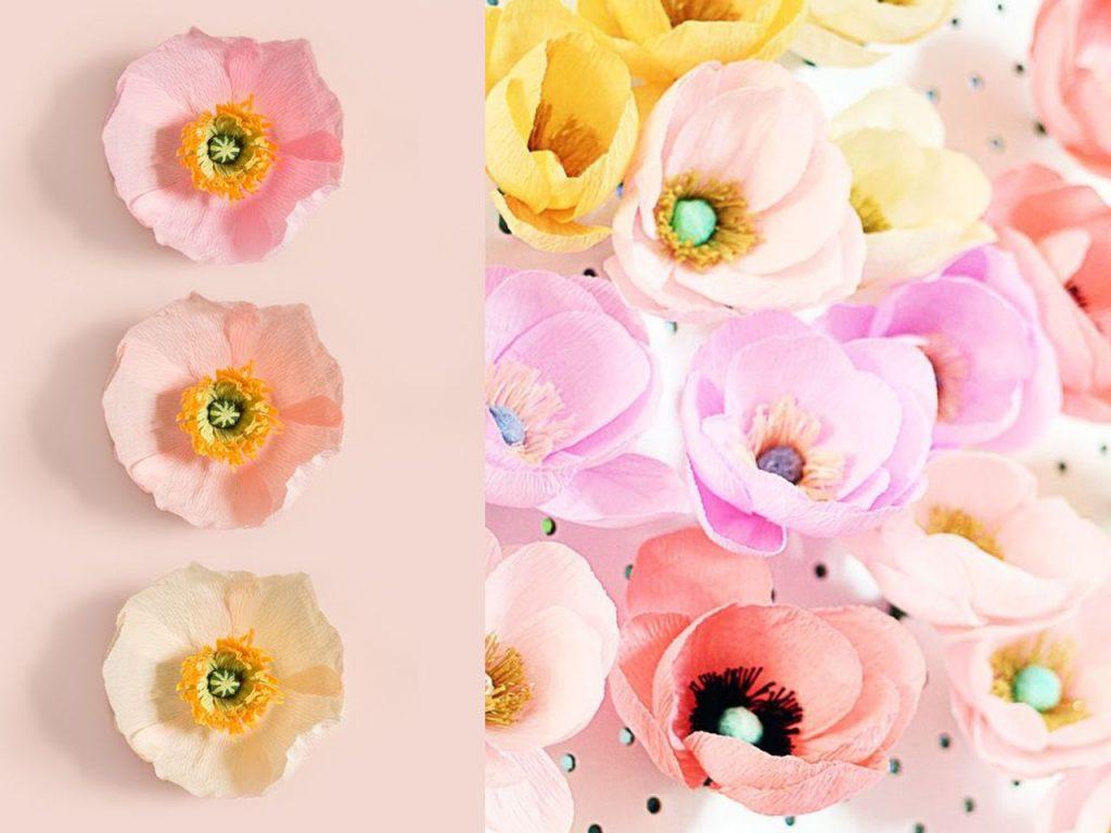 flores de papel anémonas