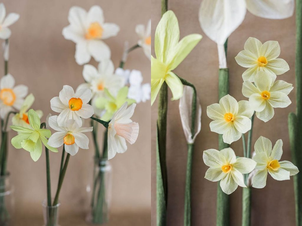 flores de papel narcisos