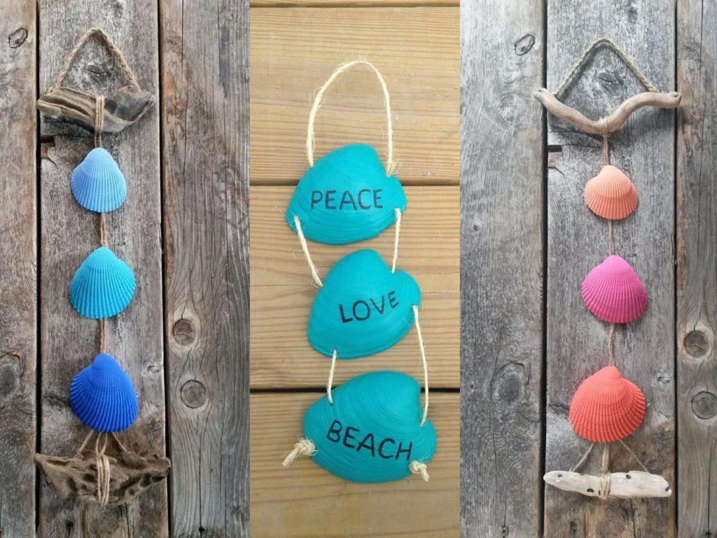 conchas de mar de colores