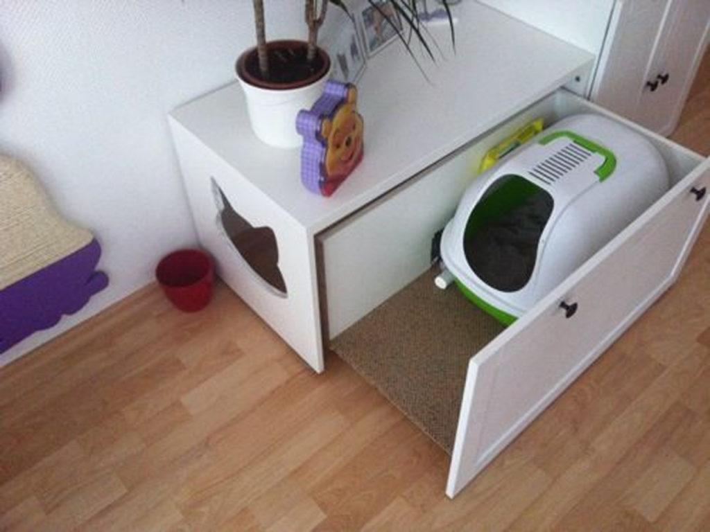 cajas de arena mascotas y decoración