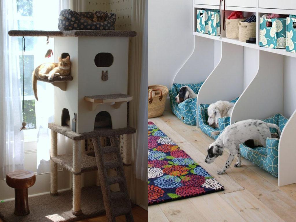 camas especiales mascotas y decoración