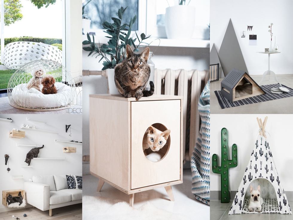 Mascotas y decoración: Consejos útiles para decorar
