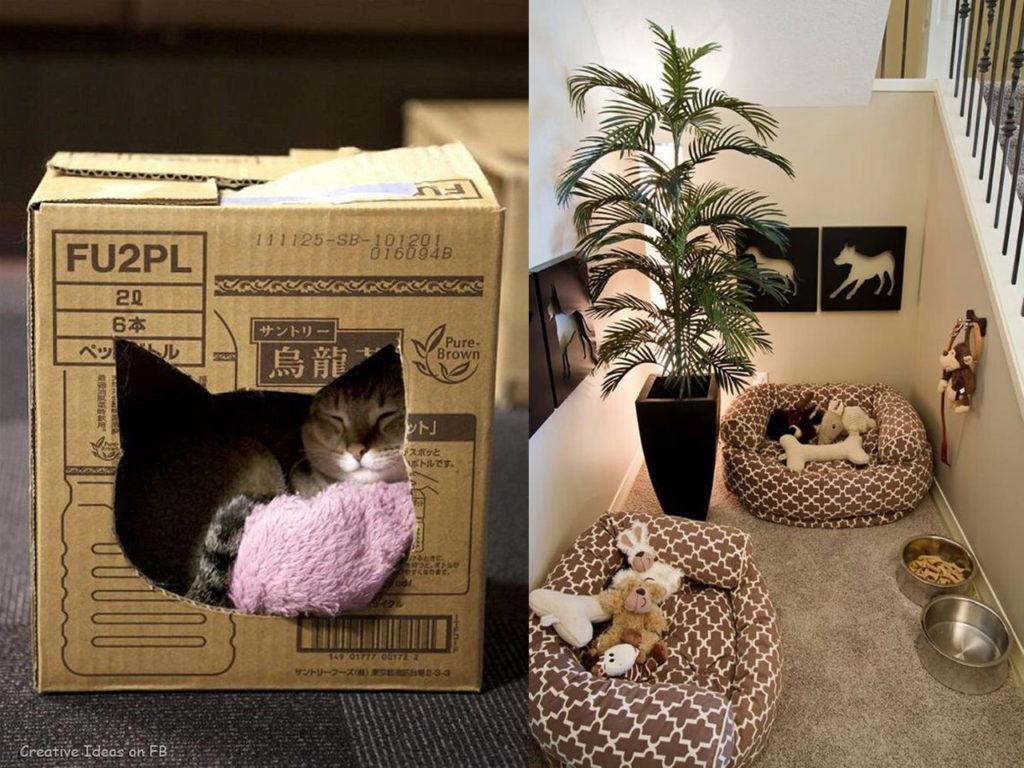 mascotas y decoración