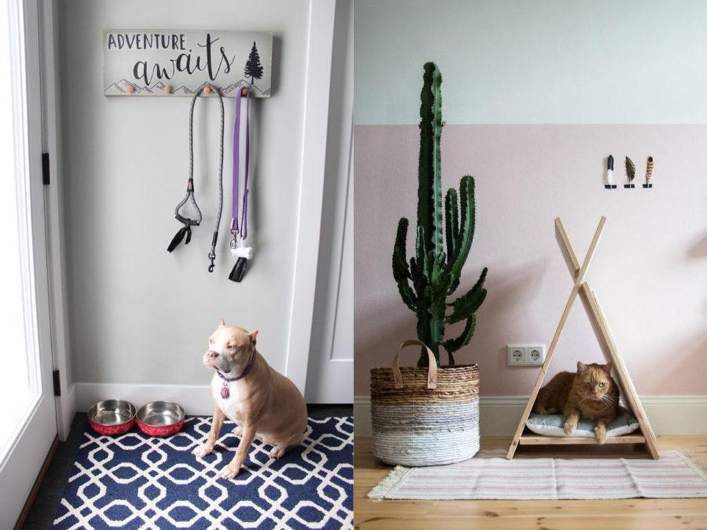tener cuidado en combinar mascotas y decoración
