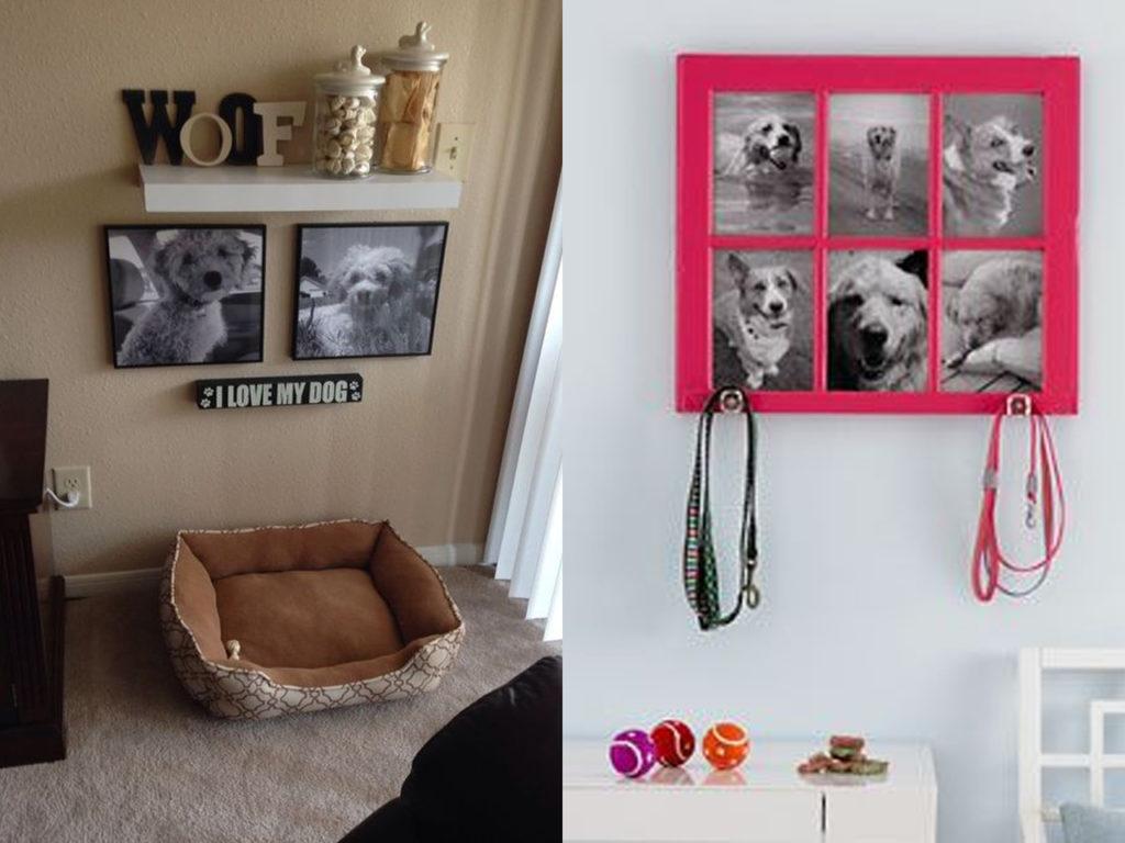 guardar cada cosa en su sitio mascotas y decoración