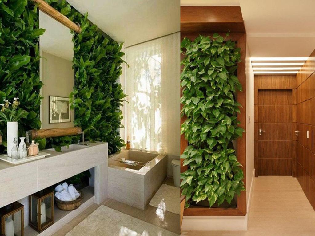 Jardines verticales ideas para incluirlos en tu decoraci n for Plantas usadas para jardines verticales